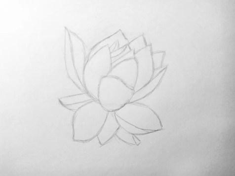 Как нарисовать цветок карандашом? Поэтапный урок. Шаг 6. Портреты карандашом - Fenlin.ru