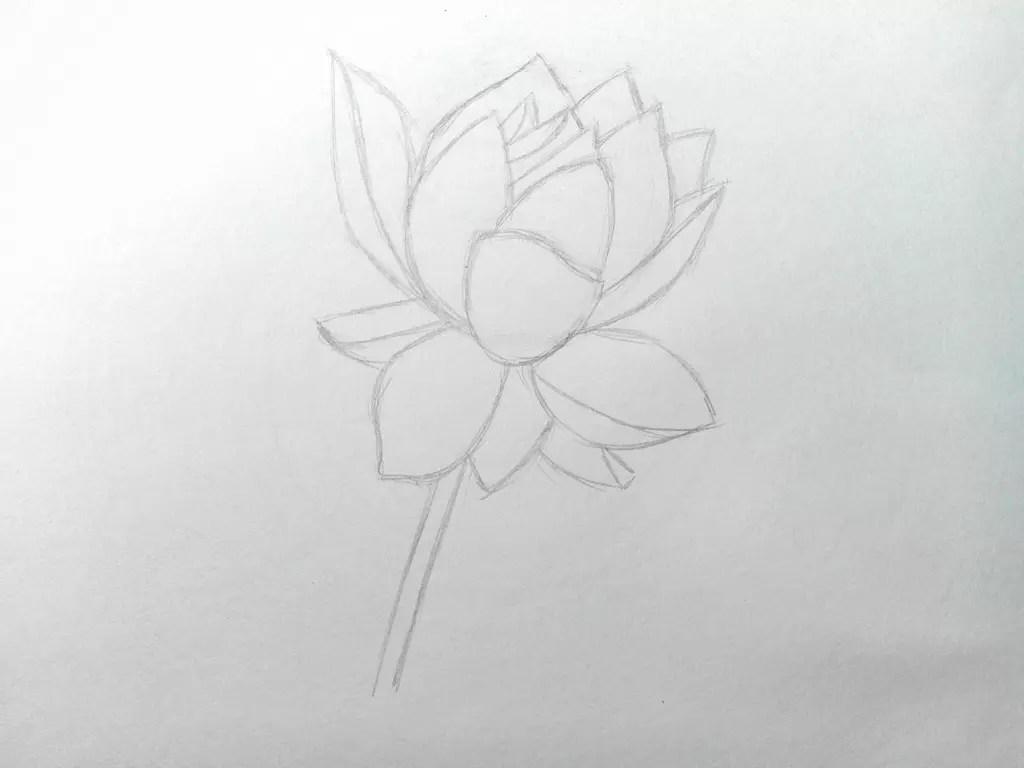 Как нарисовать цветок карандашом? Поэтапный урок. Шаг 7. Портреты карандашом - Fenlin.ru