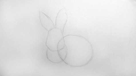 Как нарисовать кролика карандашом? Шаг 4. Портреты карандашом - Fenlin.ru