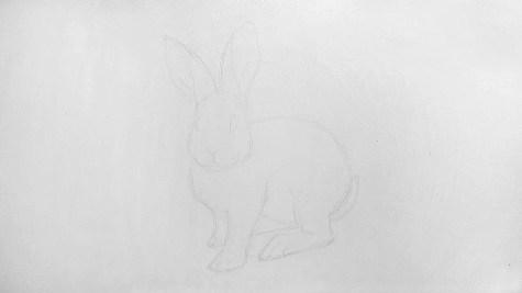 Как нарисовать кролика карандашом? Шаг 8. Портреты карандашом - Fenlin.ru