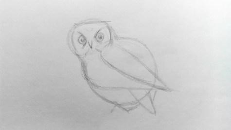 Как нарисовать сову карандашом? Шаг 5. Портреты карандашом - Fenlin.ru