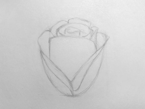 Как нарисовать розу карандашом для детей? Шаг 7. Портреты карандашом - Fenlin.ru