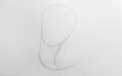 Как нарисовать кобру карандашом? Шаг 2. Портреты карандашом - Fenlin.ru