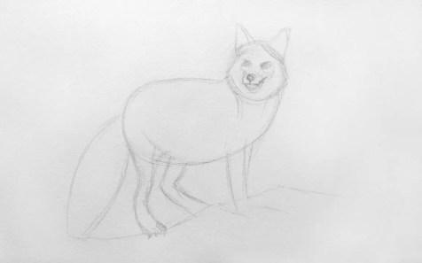Как нарисовать лису карандашом для детей. Шаг 4. Портреты карандашом - Fenlin.ru