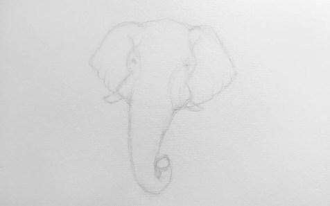 Как нарисовать слона карандашом? Шаг 5. Портреты карандашом - Fenlin.ru