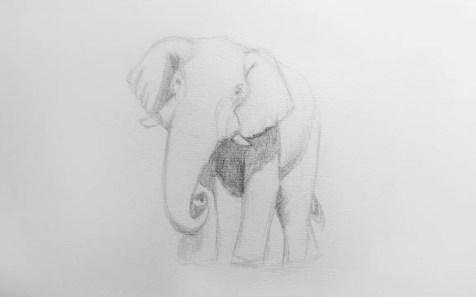 Как нарисовать слона карандашом? Шаг 7. Портреты карандашом - Fenlin.ru