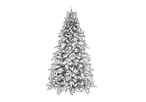 Как нарисовать елку? Шаг 11. Портреты карандашом - Fenlin.ru