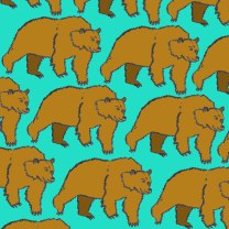 pattern48_wildbears