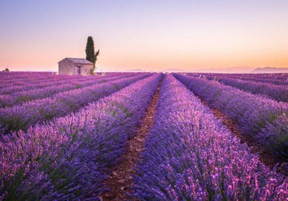 5 Provence france