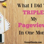 What I Did to Triple My Pageviews in One Month