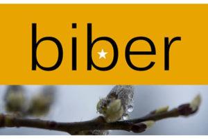 biber_logo_rosa