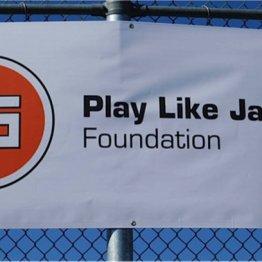 Play_like_Jackson2013e