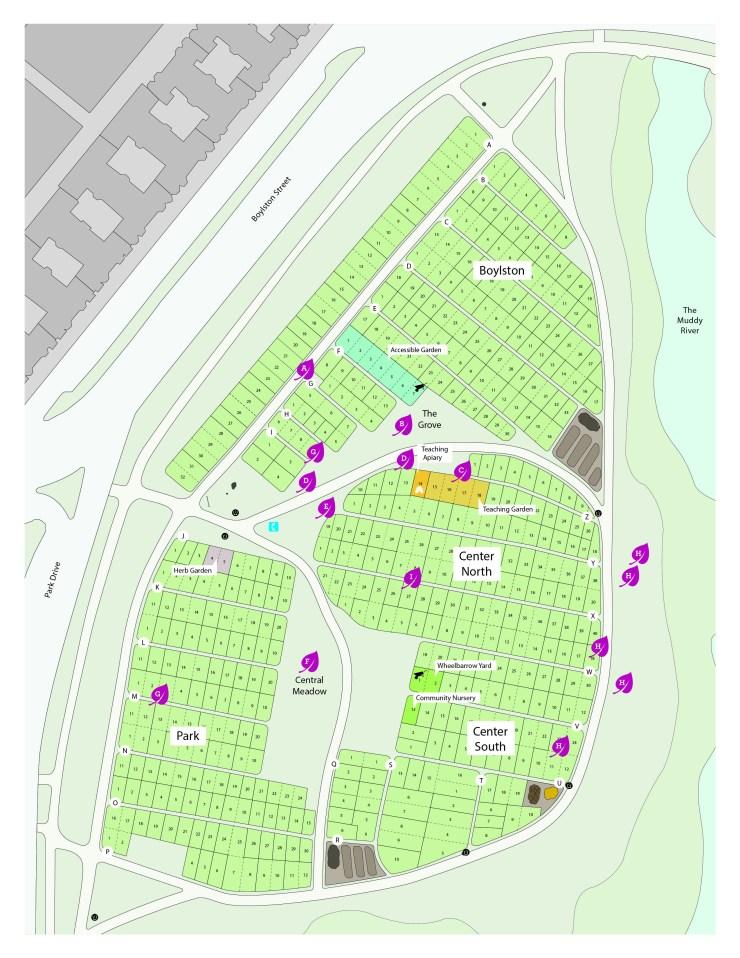 FGS tree map-8.5x11