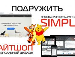 Подружить Лайтшоп И Simple