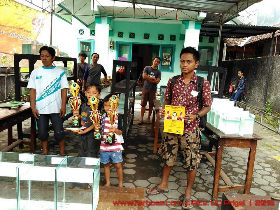 Pemenang betta contest for kids-03.jpg