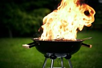 Backyard BBQ Contest - Ferdinand Heimatfest