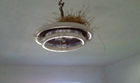 Το φωτιστικό φωλιά