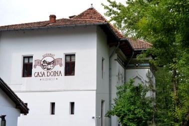 Casa Doina (2)