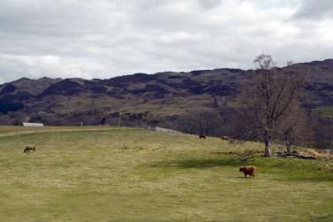 Highlands (22)