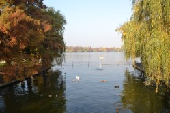Parc Herastrau (14)