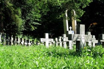 Cimitirul Eroilor (3)