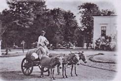 Water salesman in old Bucharest