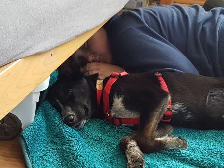 Sonntag war Luna kurz zu besuch bei Britta von Fellnasen ;-)