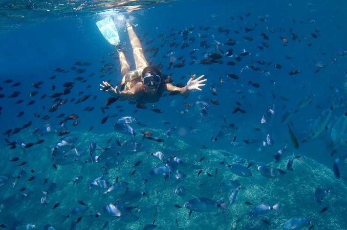 Schnorcheln Auge in Auge mit zig Fischen: Ein tiefenentspannendes Erlebnis auf Elba.