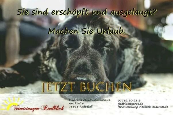Jetzt Buchen und den schönsten Urlaub am Bodensee genießen.