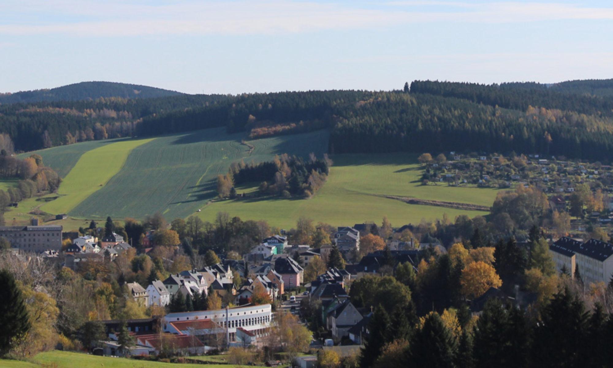 Ferienwohnung Sonntag  In Thalheim  Erzgebirge