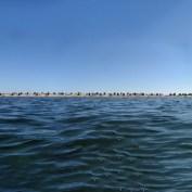 Insel-Fehmarn-von-der-Nordsee-aus-Fotografiert