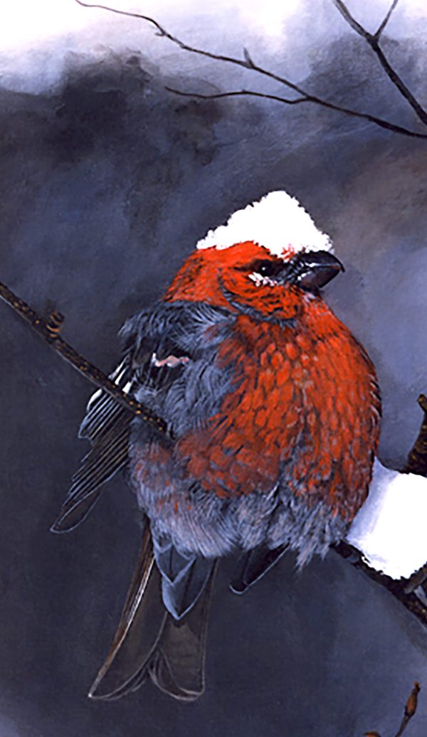 Snow Chapeau Grumpy Bird Phone Case image