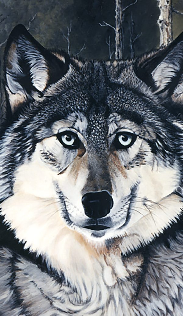 Gray Wolf Phone Case image