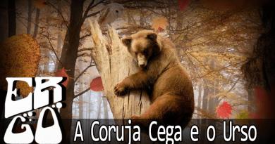 Ergo #018 – A Coruja Cega e o Urso