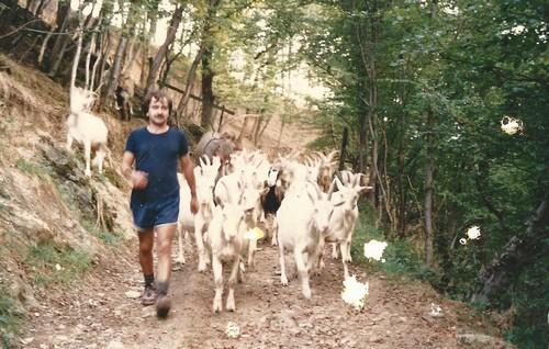 paul et ses chèvres