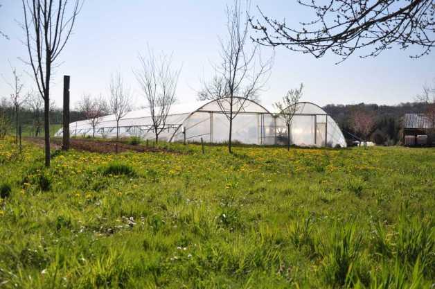 © F.BRASSARD / 2020 - Ferme de La Nolphie, Microferme Agroécologique Dordogne