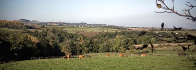 Une ferme agro-écologique dans la tradition paysanne