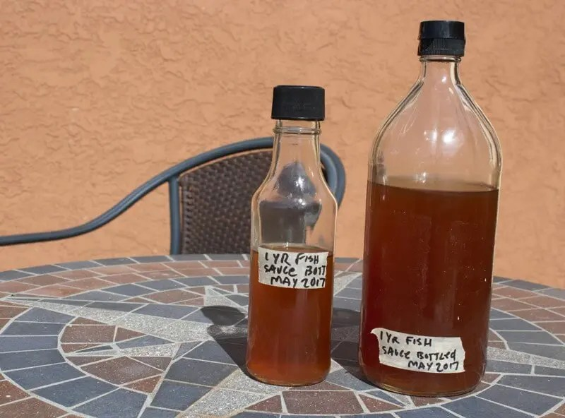Homemade fish sauce fermenters club for What is fish sauce
