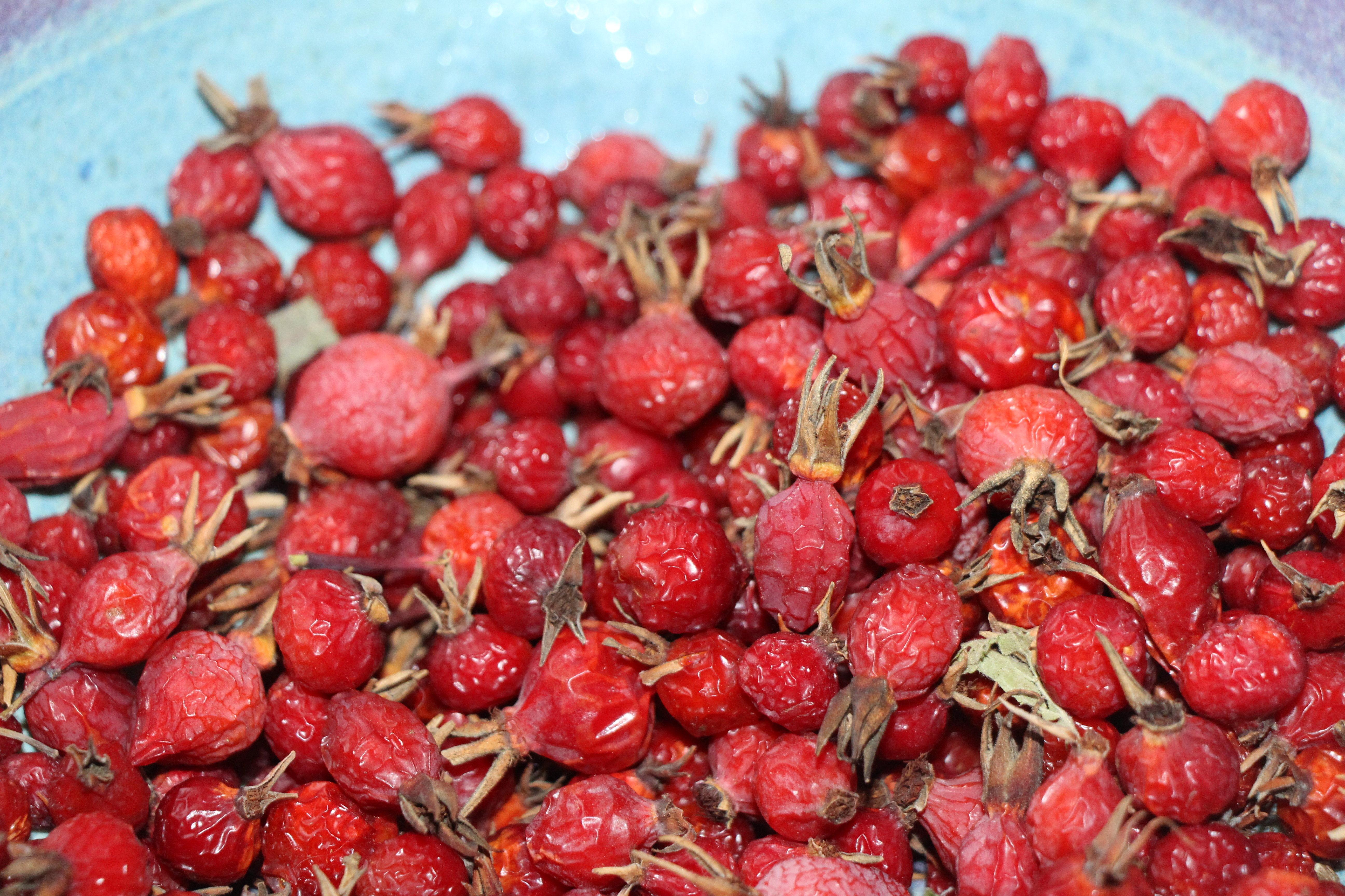 Rosehip decoction - a cure from nature