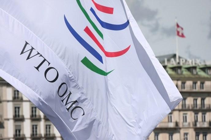 WTO Public Forum 2010