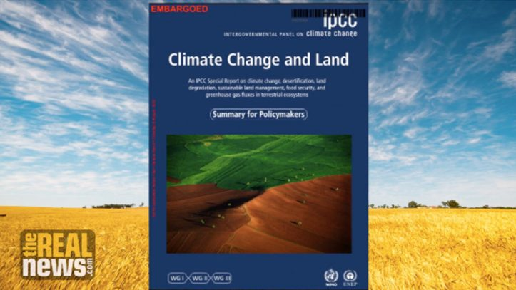 NAR080719_noor_IPCC-1024x576