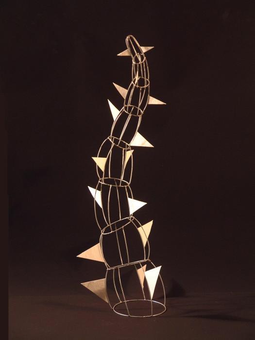 FORMA ORGANICA 2006, maqueta de alambre soldado (1)
