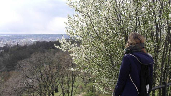 Tipps Budapest: Ausblick vom Gellertberg in Budapest