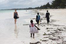 Sansibar Rundreise - Paje Strand