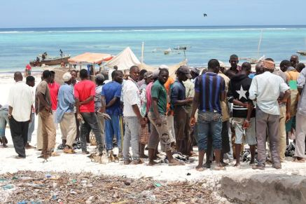 Sansibar Reisebericht: Tipp Fischmarkt in Matemwe
