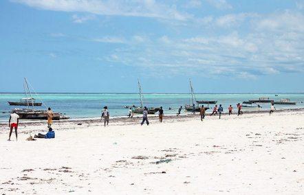 Sansibar Backpacking Rundreise: Authentisches Leben am Strand von Matemwe