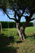 Unsere Mallorca Finca mit Garten