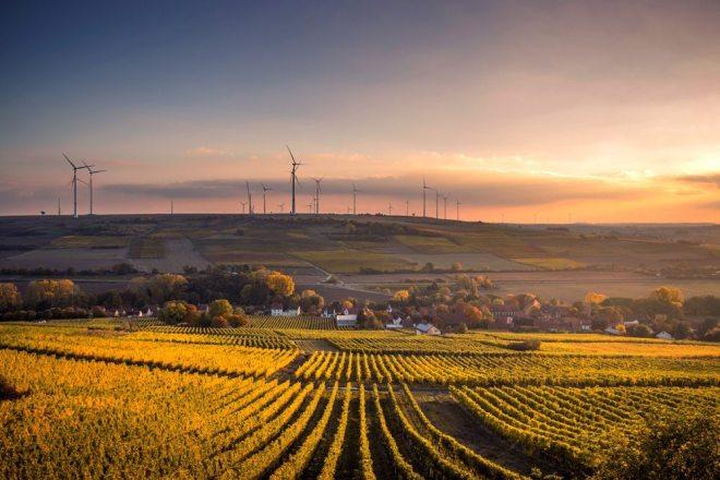Grüne Zukunft und Klimaschutz mit erneuerbaren Energien und Vaillant