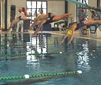 fernie swimming