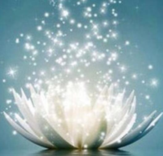 Introduction to Meditation Workshop